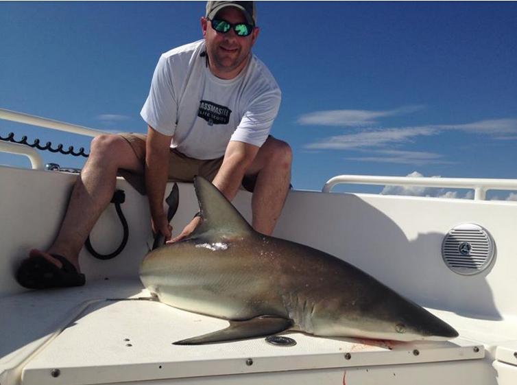 shark in boat