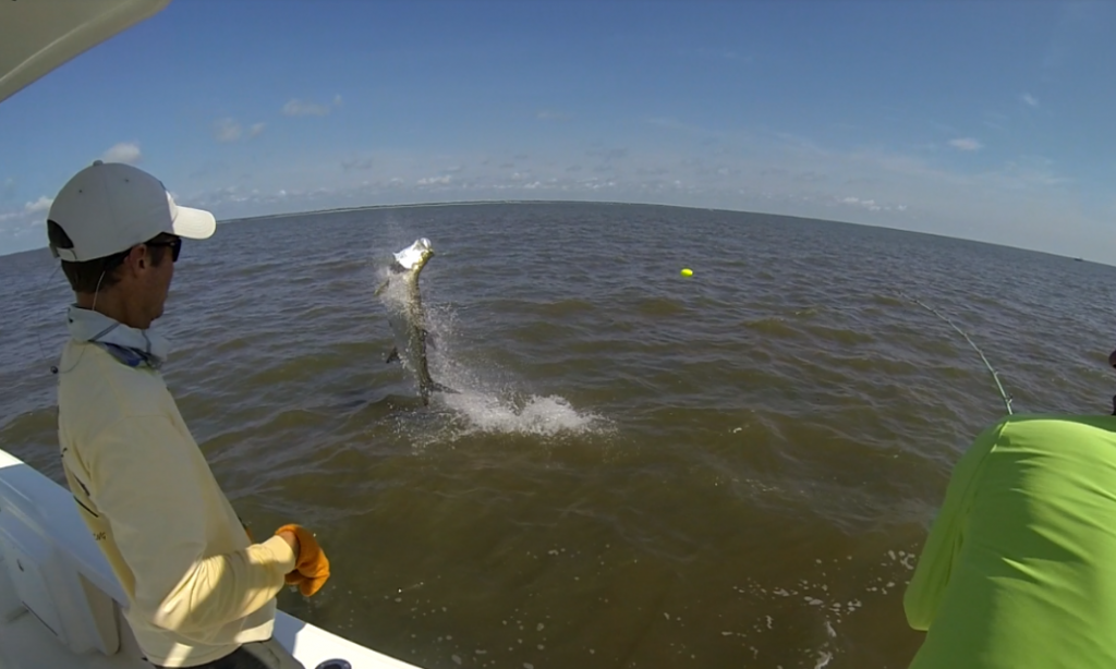 Jekyll Island Tarpon Fishing