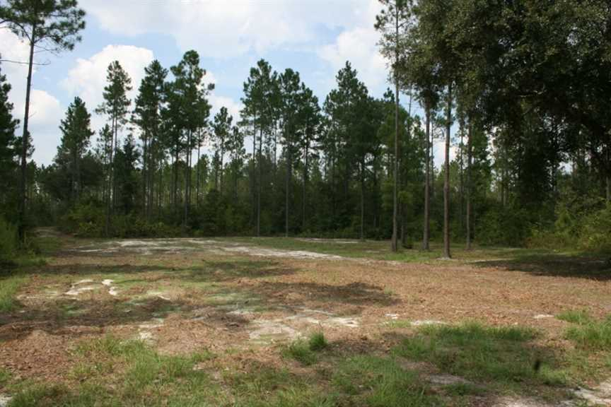 pierce county land for sale